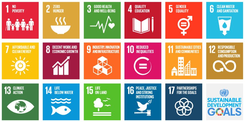 De Sustainable Development Goals van de UN