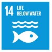 14 - Life below water